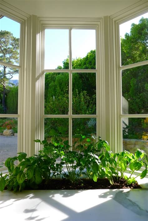 Kitchen Planter Window by 17 Best Images About Indoor Window Box Ideas On