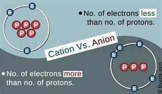 Respective Charges Of Protons Neutrons And Electrons The Basic Difference Between A Cation And An Anion