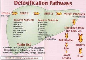 Home And Co Detox by At Home Detox Rehab Guide