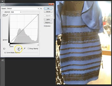 kleid schwarz blau the dress that divided the is blue and black