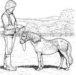 shetland pony coloring pages shetland pony coloring pages coloring pages