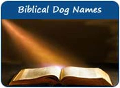 bible names for dogs biblical names names from the bible page 1
