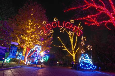 D C In December 5 Things You Can T Miss Woodley Lights At The National Zoo