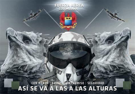 fuerza area colombiana fuerza area colombiana 193 guila arp 237 a entra en programa de conservaci 243 n de la