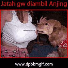 membuat gif dp bbm dp bbm islami gif download dp bbm terbaru bergerak lucu