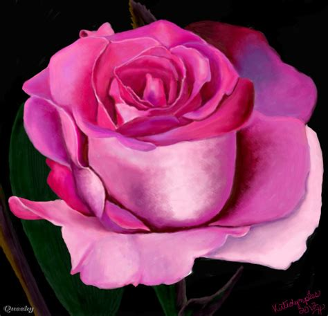 pink drawing pink rose a plants speedpaint drawing by kutedymples