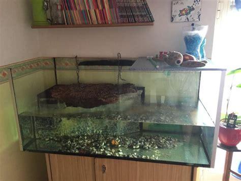 vasca per tartarughe grandi terra acquario per tartarughe a marano di napoli kijiji