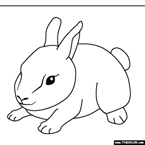baby rabbit coloring pages coloring pages starting with the letter b
