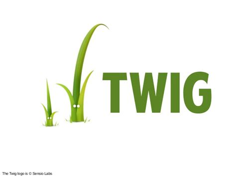 twig templating