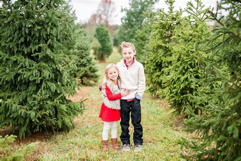 100 christmas tree farms columbus ohio 20 awesome