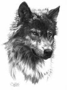 1000 ideas about wolf drawings on pinterest anime wolf