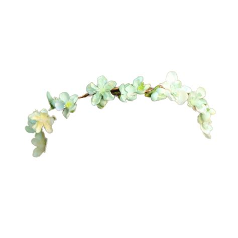 Flower Crown flower crown new 856 white flower crown png