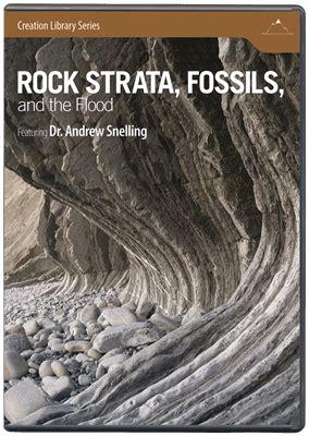 rock strata fossils   flood answers  genesis