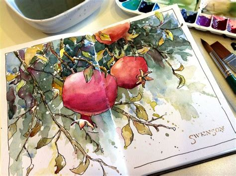 sketchbook watercolor sketchbook inspiration brenda swenson pomegranates