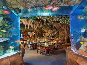 Rainforest Cafe Rainforest Cafe 174 At Disney Springs Marketplace Disney
