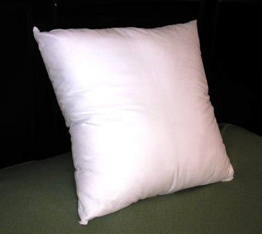 Where To Buy Pillow Forms by Pillowflex Synthetic Pillow Form Insert 22 By 22 Inch