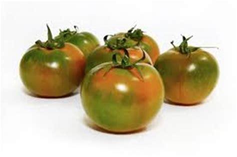 lista alimenti non contengono nichel la dieta enzimatica informazionale allergia al nichel