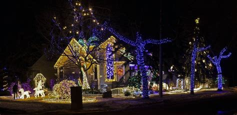 Best Edmonton Christmas Light Displays Calgary Zoo Lights Hours