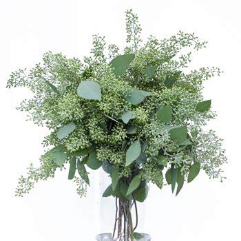 Dollar Tree Vases Centerpieces Seeded Eucalyptus For Our Centerpieces Weddingbee