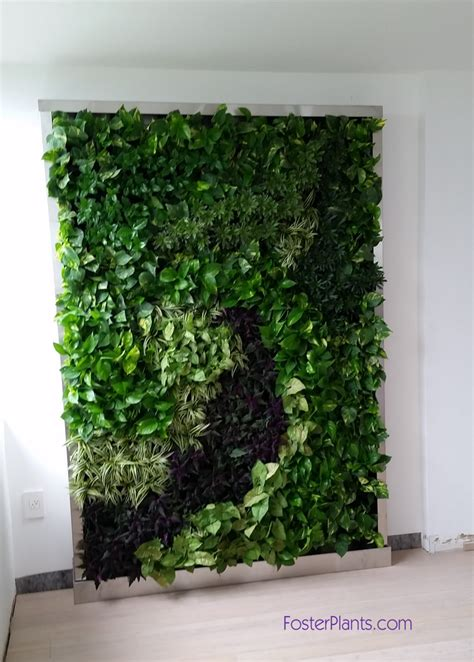 interior plant wall living wall plants indoor complete kitchen remodel indoor