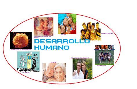 imagenes de desarrollo humano yola gabriela chana conde las 8 etapas del desarrollo humano