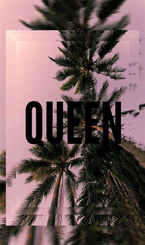 pink queen wallpaper palms pink queen wallpapers backgrounds image