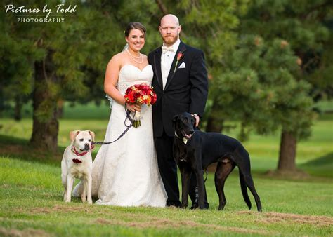 Pictures by Todd Photography   Including your dog in your
