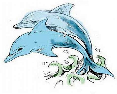 tattoo designs of dolphins dolphin design 2011 free 17013 new