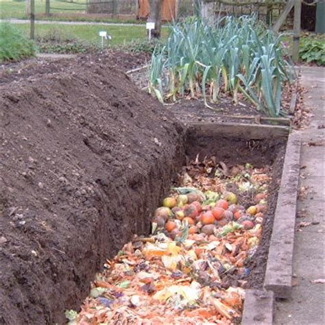 Your Organic Garden In October Www Gardenorganic Org Uk Best Organic Compost For Vegetable Garden