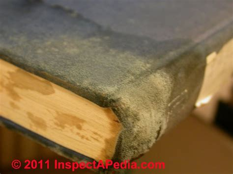 How To Remove Mold From Paper Documents