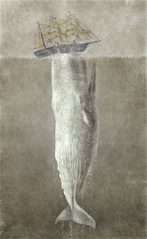 terry fan the whale art print 17 best images about moby and other whaleishness on