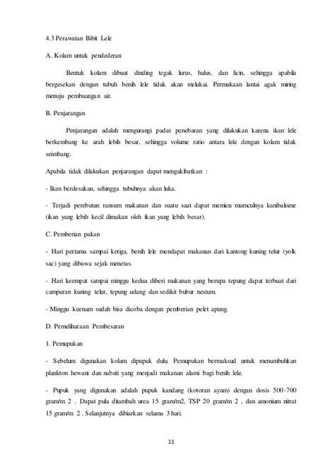 Bibit Lele Ukuran 11 12 contoh skripsi budidaya ikan lele