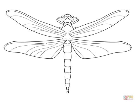 Dragonfly Printable Coloring Pages Dragonfly Colouring Pages