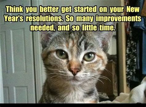 photo caption for the new year images of new year 2016 resolutions happy new year 2017