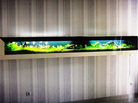 desain aquarium dinding desain aquarium dinding
