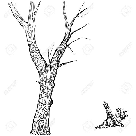 Tree Stump Outline by Tree Trunk Clipart Sillouette Clipground
