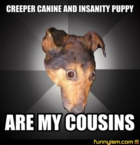 insanity puppy creeper canine and insanity puppy are my cousins meme factory funnyism pictures