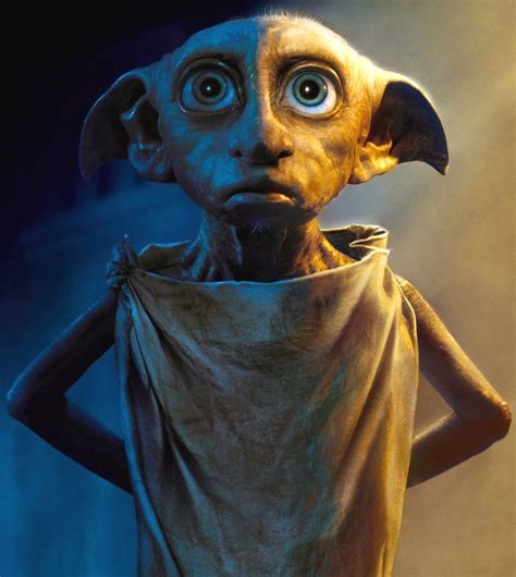 house elf house elf harry potter wiki
