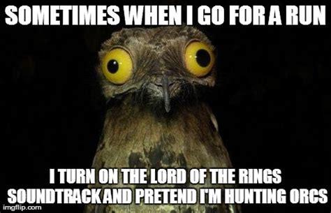 Orc Meme - fandomfriday 11 funny lotr memes