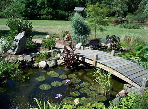 Fish For Backyard Ponds by Small Backyard Fish Pond Ideas Pool Design Ideas