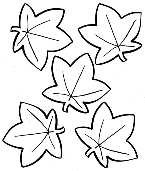 fall coloring fall flowers coloring pages printable free coloring sheets