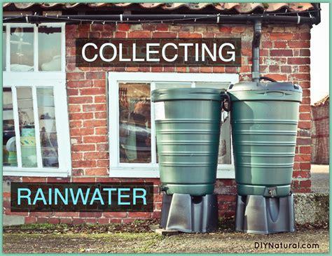 rain water harvesting commercial rainwater collection collecting rainwater in diy or commercial rain barrels