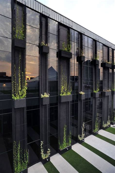 Vertical Garden Facade Troughs With Climbers On Facade Of Building Green Walls
