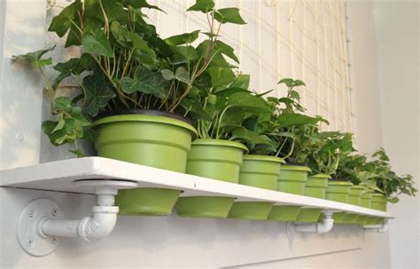 Wall Plant Shelf plant wall shelf with netted frame for indoor by