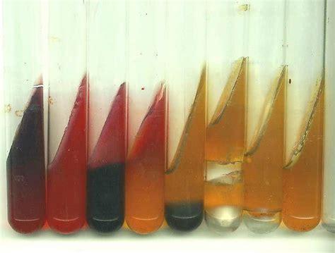 test microbiologia microbiologia prova de kligler iron agar ou de