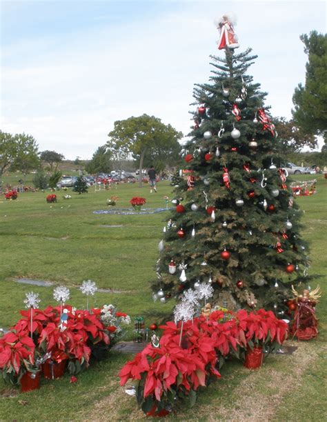 16 in solar powered christmas tree for cematery tree tree grave stock photos cemetery trees solar small for cemetery