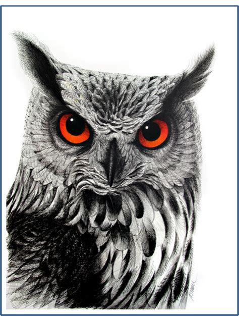 owl tattoo png erik bruun huuhkajan p 228 228 2008 graphic design and