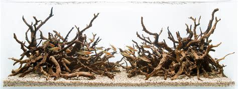 aquarium design group hardscape aquarium design group tanglerose a hardscape for