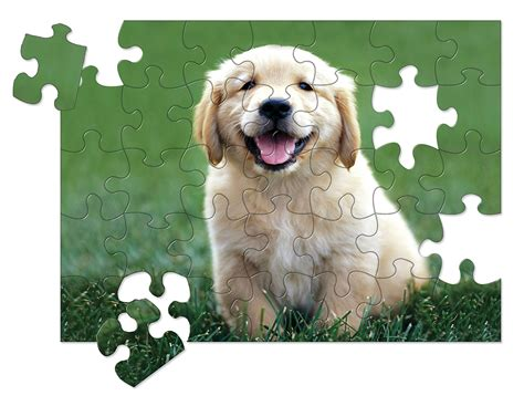 golden retriever puzzles golden retriever puppy 30 puzzle on the farm
