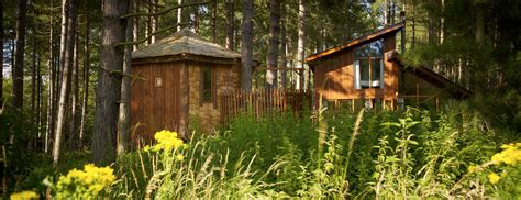Tree Cabin Holidays by Luxury Family Treehouse With Tub Sherwood Forest